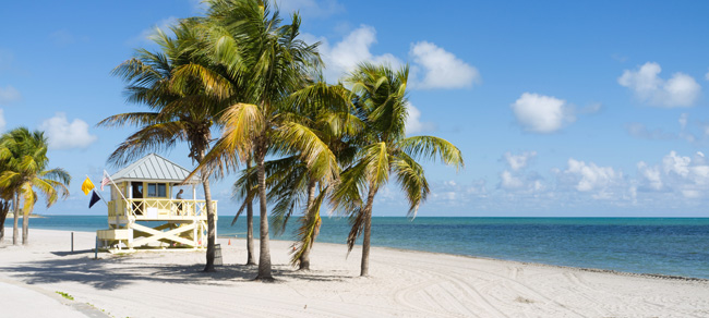 miami guide tourist destination guide